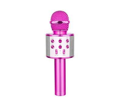 Product image of LETS GO Microphone